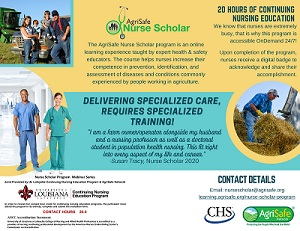 infograhic on Nurse Scholar course